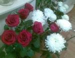 32_roze