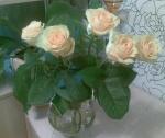 33_roze